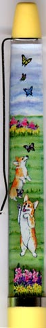 Pembroke Welsh Corgi Club - window side